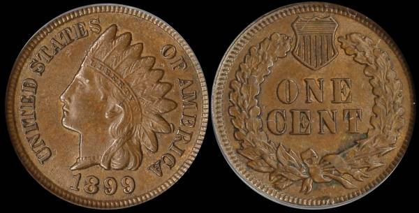 1899 Indian Head Cent MS60 ANACS 5335186 raw
