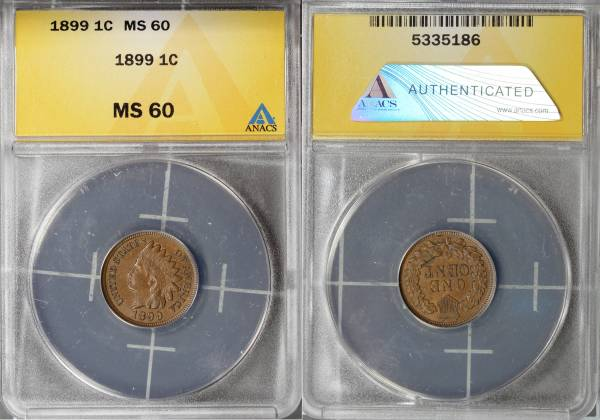 1899 Indian Head Cent MS60 ANACS 5335186 slab