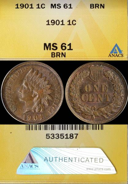 1901 Indian Head Cent MS61 BRN ANACS 5335187 display