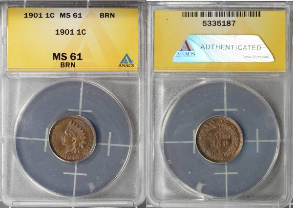 1901 Indian Head Cent MS61 BRN ANACS 5335187 slab