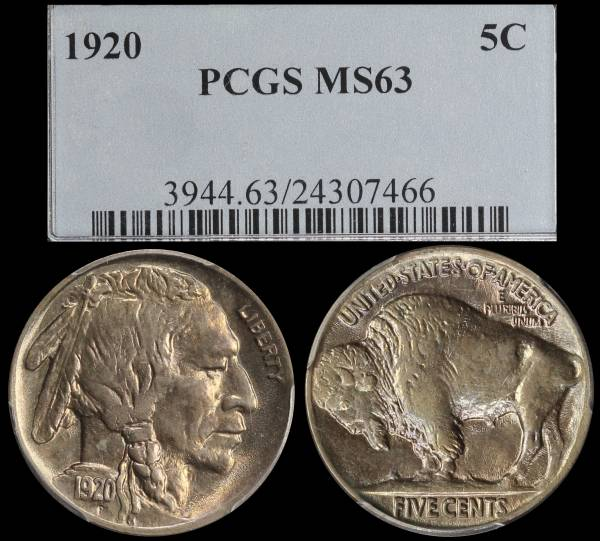 1920 P Buffalo Nickel PCGS MS63 24307466